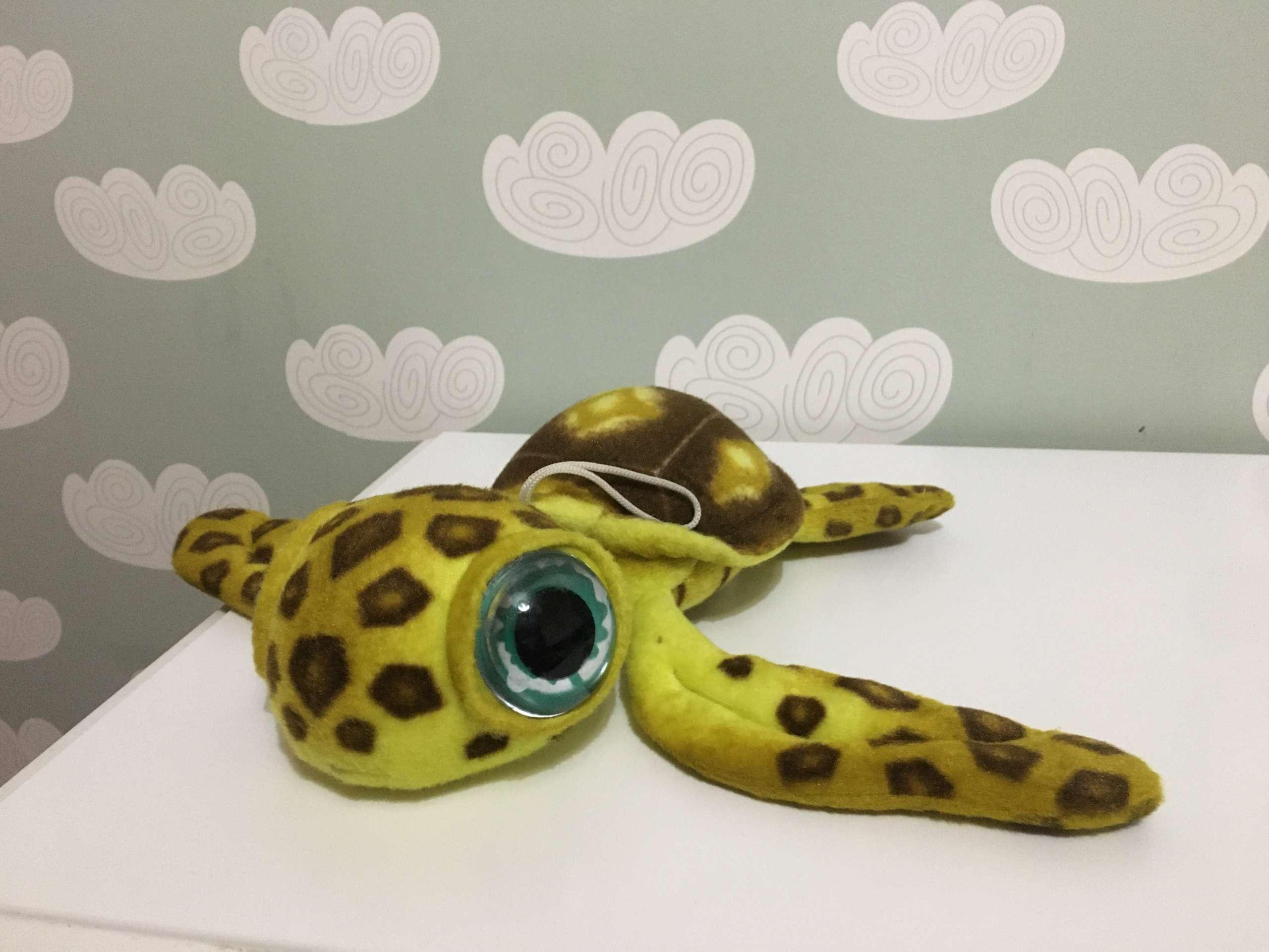 Rescatar una tortuga