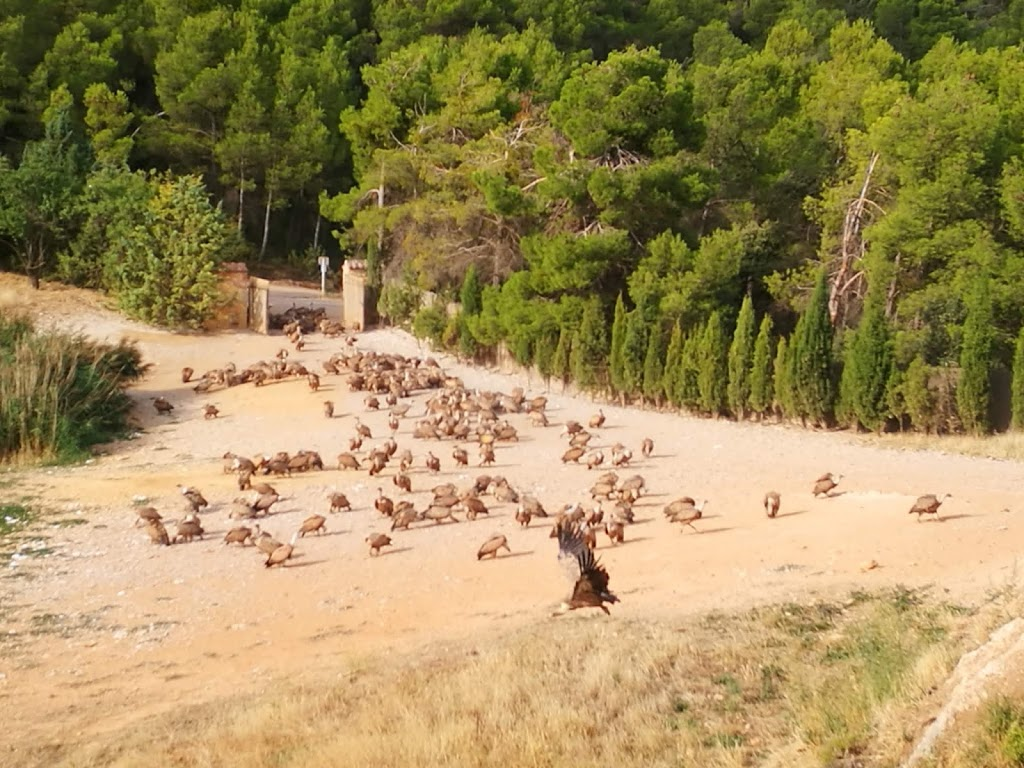 Viaje a Teruel con niños