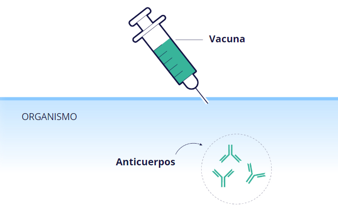 ¿Puede una madre lactante vacunarse contra la COVID?