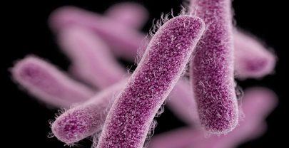Las superbacterias: la pandemia silenciosa